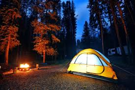 Airbnb of camping' takes aim at crowded B.C. campgrounds ...